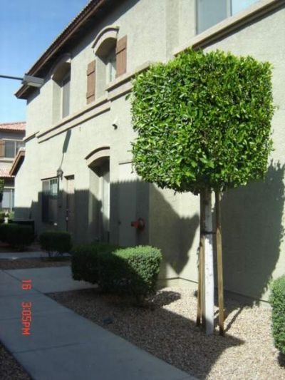 Townhouse for Rent in Graysilll Condos-GATED