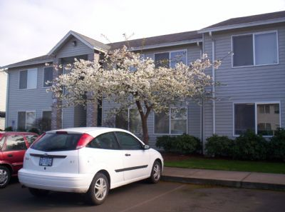 Apartment for Rent in Eugene